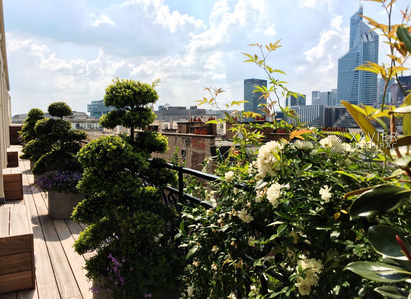 Xavier de Chirac paysagiste : terrasse avec des rosiers lianes, des campanules fleurs poétiques dialogue avec les topiaires nuages
