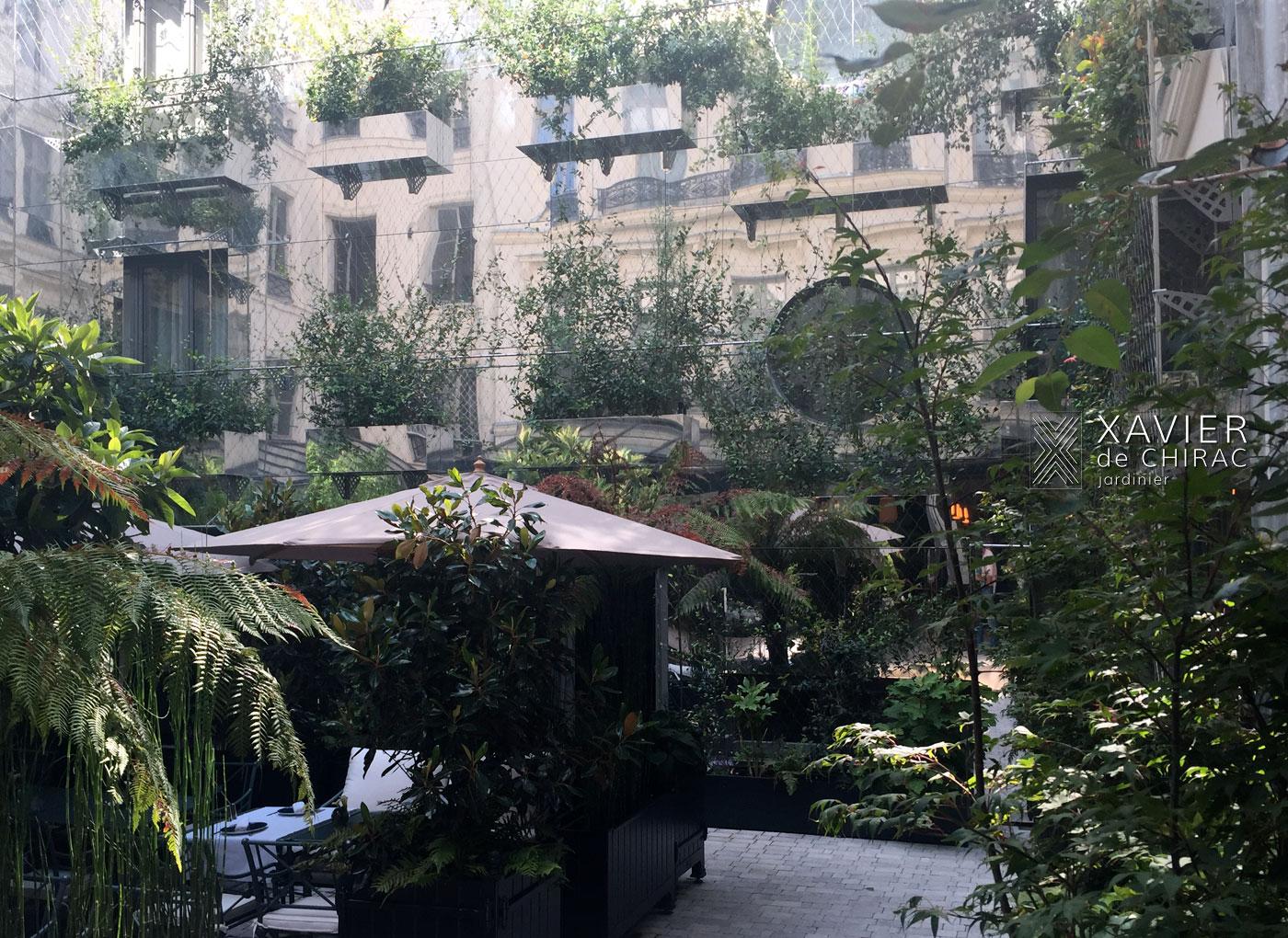 Des miroirs et des plantes, jardin Parisien, Xavier de Chirac, Jardinier